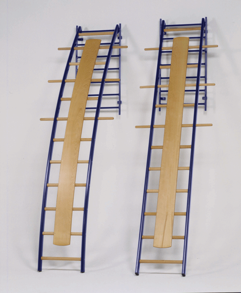 Wall Ladders Sport System
